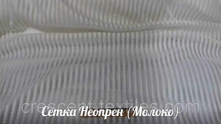 Сетка Неопрен (Белый-Молоко), фото 2