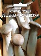 Мицелий грибов Вешенка королевская (5 грибных палочек)