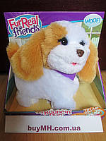 FurReal Friends Happy to See Me Pets My Bouncin' Pup Pet Интерактивный Щенок, фото 1