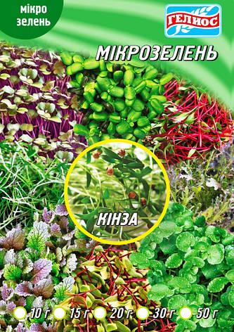 Семена Кинзы для микрозелени 20 г, фото 2
