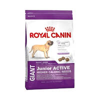Royal Canin (Роял Канин) Giant Junior Active