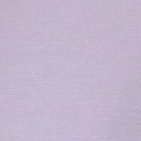 Ролеты тканевые (рулонные шторы) A Besta mini открытый короб