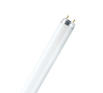 Лампа LUMILUX T8 L 15 W / 865 G13 OSRAM