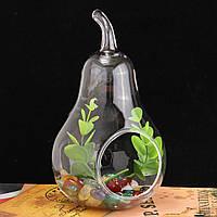 ХрустальнаястекляннаяцветочнаявазаTerrariumContainer Hydroponic Свадебное Украшения для ваз 1TopShop