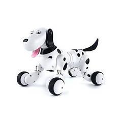 Собака-робот + пульт Z338