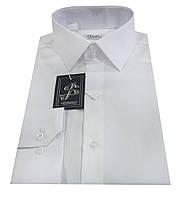 Рубашка мужская белая №10-12к.- Non Iron, фото 1