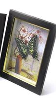 Бабочка в рамке (19,5х14,5х3 см)