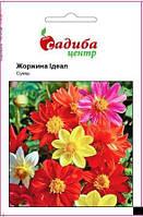 Насіння квітів Жоржина  Ідеал, суміш 0,1г ТМ Садиба центр
