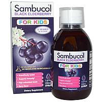 Черная бузина для детей, Sambucol, (жидкий), 230 мл
