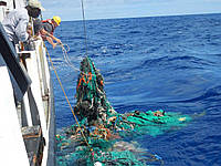 Тихоокеанский мусорный участок будет очищен