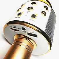 Микрофон WS-858 WESTER!Акция, фото 1