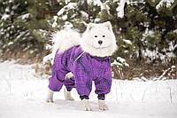 Diego Snow комбинезон для собак №6