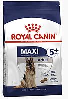 Сухой корм Роял Канин Royal Canin Maxi Adult 5+ для собак крупных пород от 5 лет 4 кг