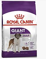Сухой корм Роял Канин Royal Canin Giant Adult  для взрослых собак гигантских пород 15 кг