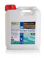 Альгицид для бассейна PG-42 5 л концентрированный с бактерицидным эффектом