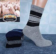 d6a65575a0c06 Шерстяные мужские носки с махрой Житомир 8011 41-45. В упаковке 12 пар