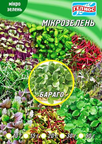 Семена Бораго для микрозелени 10 г, фото 2