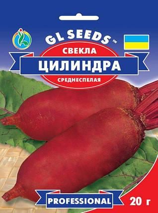 Свекла Цилиндра, пакет 20 г - Семена свеклы, фото 2