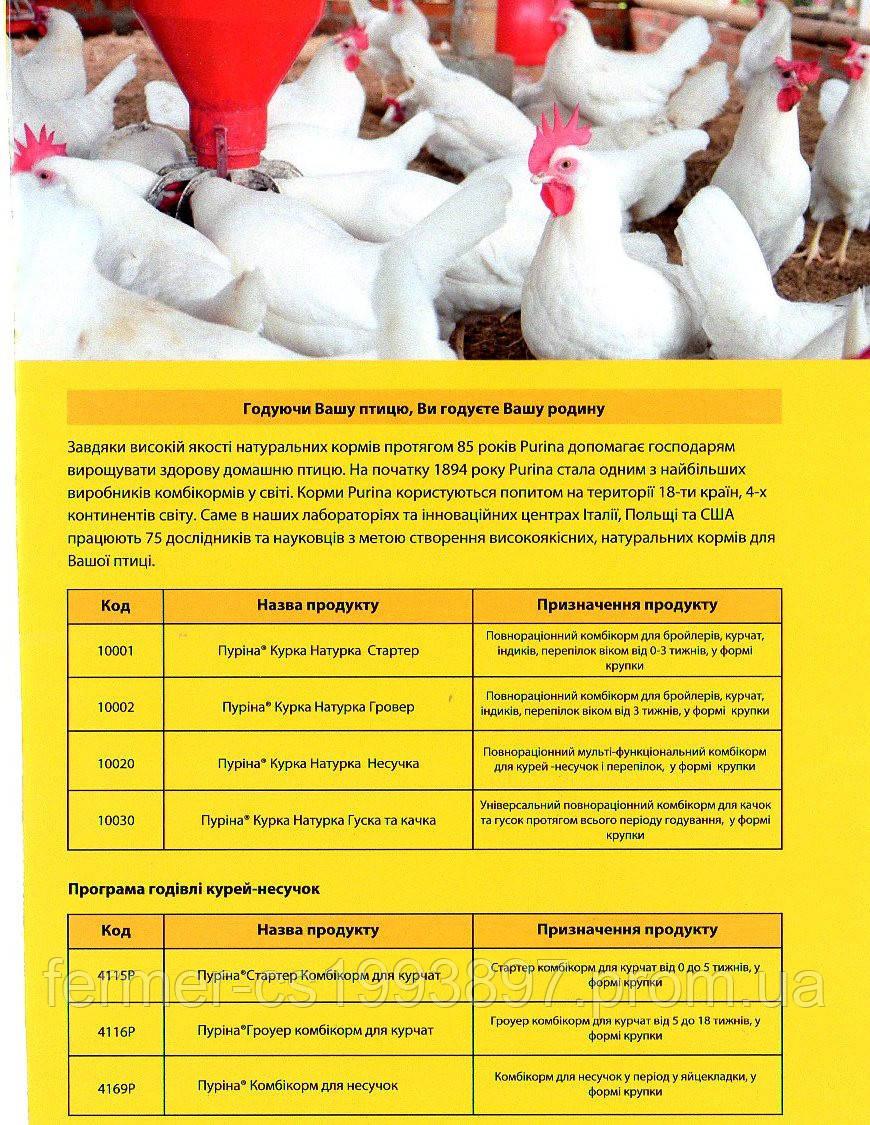 2f4462a671453b Пуріна® Стартер Комбікорм для курчат та БРОЙЛЕРІВ(Ціна в прайсі), цена 402  грн./мешок, купить в Запорожье — Prom.ua (ID#74236255)