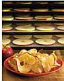 Сушилка для овощей и фруктов EXCALIBUR 4548CDFB, фото 4