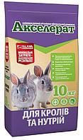 Акселерат для кроликов и нутрий, 10кг