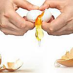 Искусство разбивать яйца от компании OVO-TECH