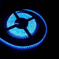 Светодиодная лента SMD 3528 120д/м. Синяя влагозащищённая