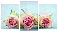Модульная картина Декор Карпаты 100х53 см Розы, КОД: 184218