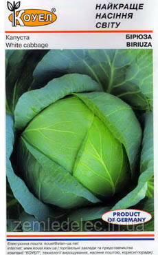 Семена капусты б/к Бирюза 0,5 кг. Коуел (Сатимекс)