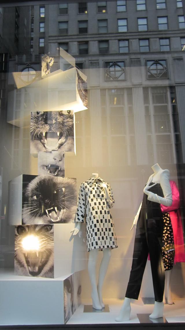 Раздел Женские комбинезоны - фото teens.ua - New York,магазин Прада,витрина с комбинезонами