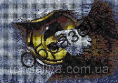 Схема для вишивки бісером «Політ Орла»
