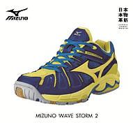Кроссовки гандбольные MIZUNO WAVE STORM 2