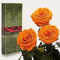 Три долгосвежих розы Оранжевый Цитрин 7 карат (короткий стебель)
