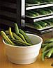 Сушилка для овощей и фруктов EXCALIBUR 4548CDFB, фото 8
