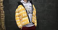 Мужской  пуховик ( Евро зима ) в стиле Supreme\TNF | Желтый