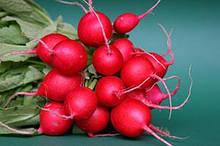 Пакетированные семена редиса ( оптом от производителя)