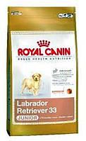 Royal Canin (Роял Канин) Golden Retriver Junior 29 - 12 кг
