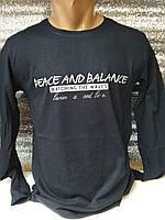 Лонгслив мужской Peace and Balance Турция р. M, L, XL, XXL.