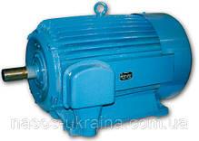 Электродвигатель 55 кВт 3000 об/мин 4АМУ АД 5АМ 5АМХ 4АМН А 5А АИР 225 M2, фото 2