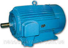 Электродвигатель 75 кВт 3000 об/мин 4АМУ АД 5АМ 5АМХ 4АМН А 5А АИР 250 S2, фото 2