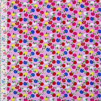 Микровельвет розовый яблоки ш.115 (10724.090)
