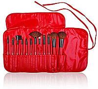 Подарочный набор кистей для макияжа Professional 12 - RED