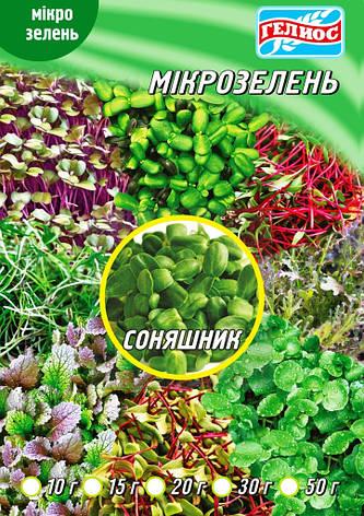Семена Подсолнуха для микрозелени 10 г, фото 2