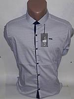 Рубашка мужская Paul Smith vd-0036 белая приталенная в принт с длинным рукавом трансформер Турция