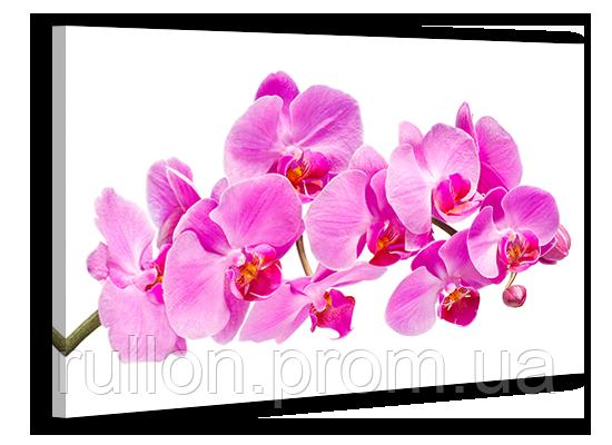 "Картина на холсте YS-Art XP090 ""Цветы 4"" 50x70"