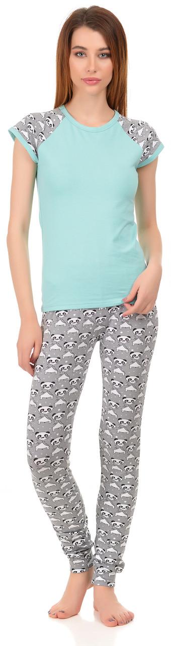 Футболка штани 0053/160 Barwa garments