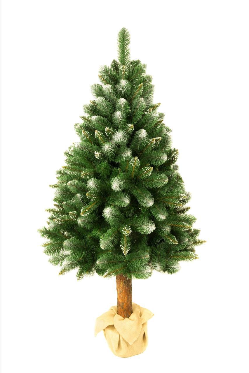 Искусственная новогодняя елка на натуральном стволе 180 см + гирлянда в подарок