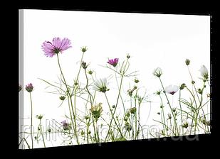 "Картина на холсте YS-Art XP127 ""Цветы 7"" 50x70"