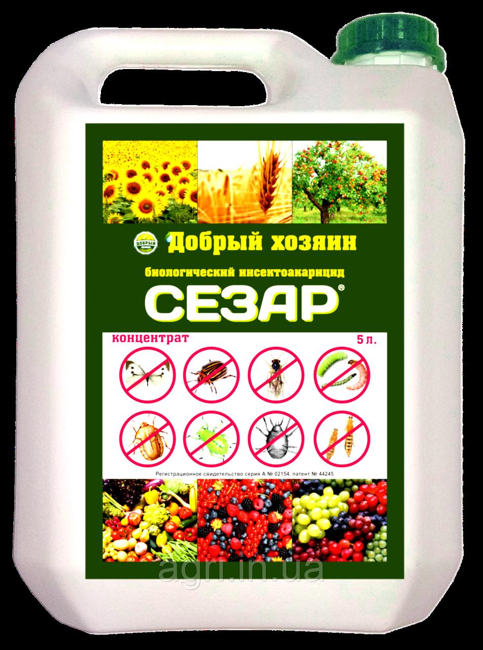 Сезар- биологический инсектоакарицид, 3л