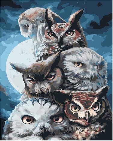 Картины по номерам 40*50 см В КОРОБКЕ Ночные охотники Artstory